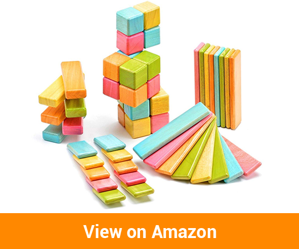 Tegu Original Magnetic Wooden Block Set
