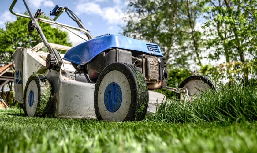 The Best Lawn Mowers in 2019 for Routine Lawn Maintenance