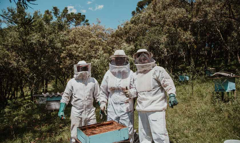 Best Bee Suits Of 2019 – Stay Protected