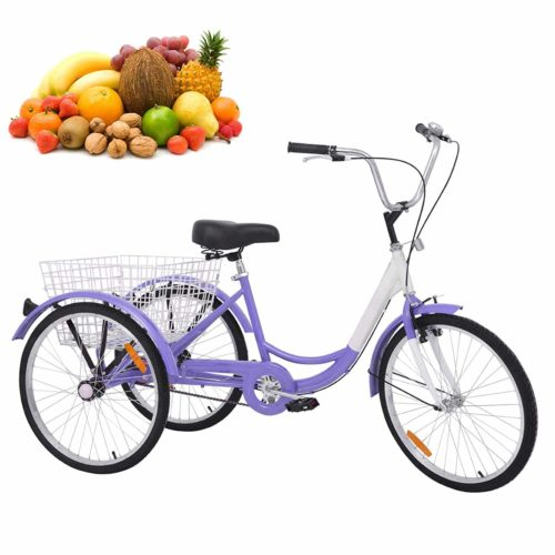 Tricycle Adulte H & ZT Simple Vitesse