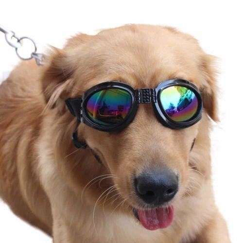 NACOCO Pet Glasses
