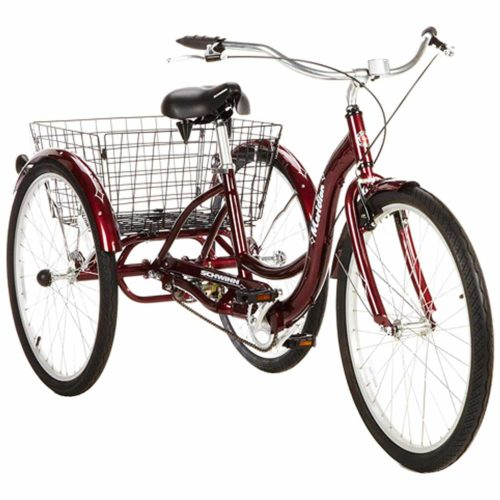 Tricycle adulte méridien Schwinn à une vitesse