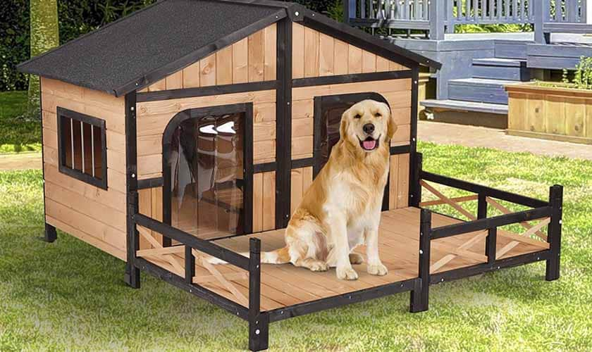 Best Dog Houses of 2019 – A Special Place for Your Special Pet