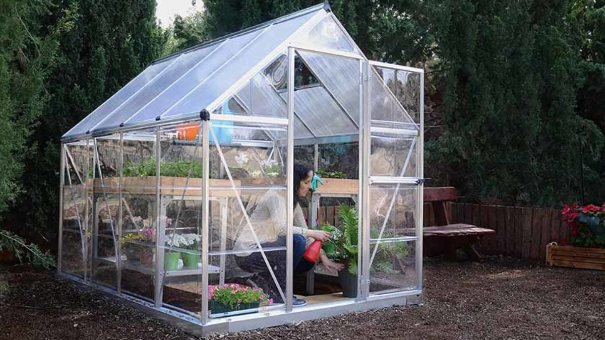 Best Portable Greenhouses Of 2020 Review Guides Thebeastreviews
