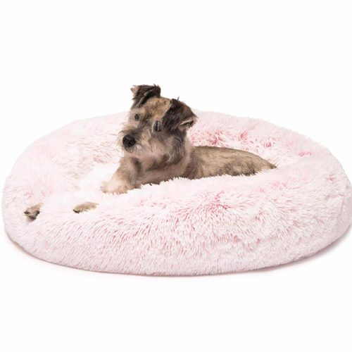 Friends Forever Donut Dog Bed