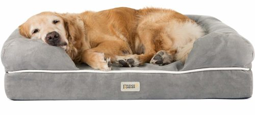 Friends Forever Orthopedic Lounge Sofa Dog Bed