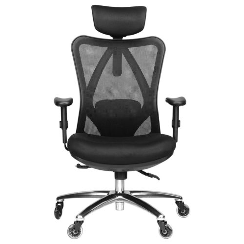 Duramont Ergonomic Office Chair