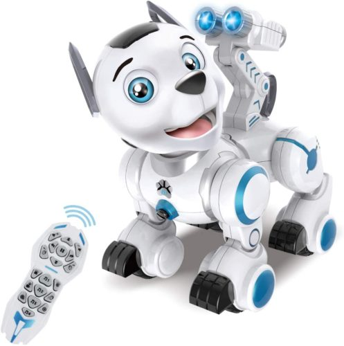 Fisca Remote Control Robotic Dog
