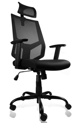 SMUGDESK Ergonomic Chair
