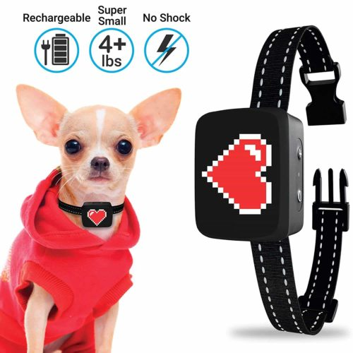 Small Dog Bark Collar