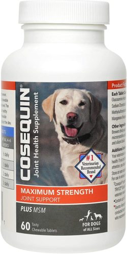 Cosequin Maximum Strength Joint MSM Supplement